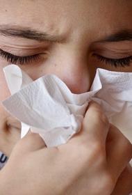 Врач Людмила Лапа назвала распространённые аллергены весной