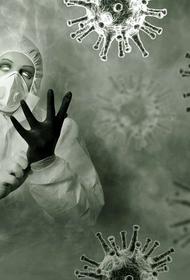 СМИ: ВОЗ после визита специалистов в Ухань представила четыре вероятных сценария передачи коронавируса SARS-CoV-2 людям