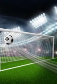 Тренер ФК «Океан» уверен, что остановил преступление во время матча