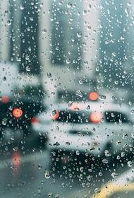 «Рыжий» дождь прошел в Приморье