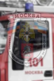 Неизвестные ночью подожгли в Москве в промзоне несколько грузовиков