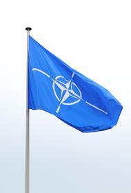 Отставные генералы НАТО рассказали об уязвимости альянса