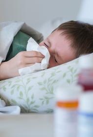 В Хабаровске 80 детей за неделю заболели пневмонией