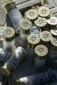 В сеть попали фото запасов оружия стрелка-пенсионера из поселка Новые Вешки в Мытищах