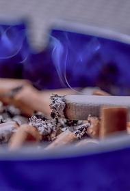В Госдуме оценили минимальную цену на сигареты