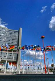 ООН обвиняет французов в уничтожении мирных жителей в Мали