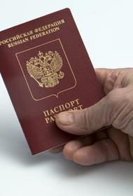 В МВД рассказали, жители каких стран чаще других получали российское гражданство в 2020 году