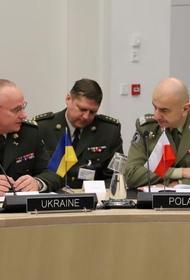 Украина опять громко постучалась в НАТО, пока безответно