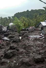 В результате схода оползня в Индонезии погибли более 20 человек, более тысячи были эвакуированы