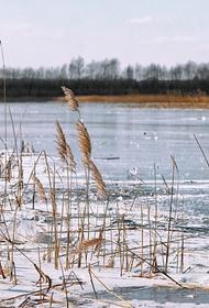 Семь человек на Сахалине провалились под лед на снегоходе