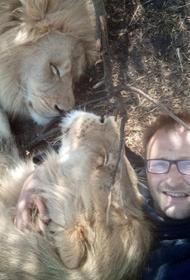 Москвич продал квартиру, чтобы купить и содержать львов в ЮАР