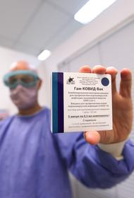 Гинцбург заявил, что ЕС не спешит допустить «Спутник V» на свой рынок из-за конкуренции