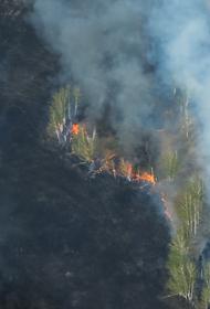 В Челябинской области с 10 апреля будет установлен пожароопасный сезон