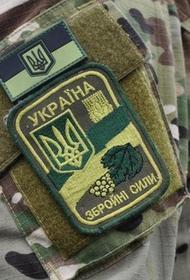 Генштаб ВСУ объявил сборы территориальной обороны в приграничных районах Украины