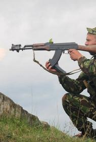 Игорь Стрелков назвал возможный срок начала наступления ВСУ в Донбассе: 15–20 апреля