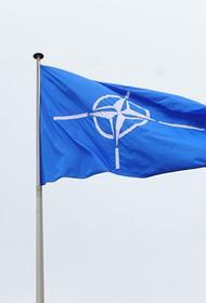 В кабмине ФРГ заявили, что вопрос вступления Украины в НАТО на повестке дня не стоит