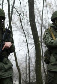 «АННА-Ньюс»: Обстрел поселка Веселое. Экстренное заявление официального представителя НМ ДНР