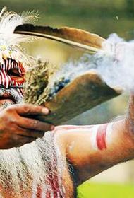 Необычные запреты в разных странах направленные на защиту природы