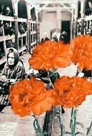 Дню освобождения посвящается