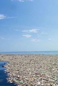 Океан придумал, как бороться с пластиковым мусором, чем это может закончиться для человека?