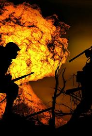 В ЛНР сообщили, что  украинский военнослужащий подорвался на мине в Донбассе