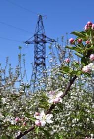 Энергетики филиала «Россети Кубань» обеспечили электроэнергией 49 объектов АПК