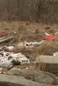 У заповедника под Хабаровском нашли тонны мусора