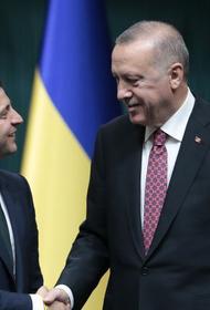 Турция предсказала победу своим беспилотникам на Донбассе