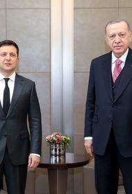 Украинские СМИ узнали о предложении Зеленского президенту Турции Эрдогану 50 % акций предприятия «Мотор Сич»