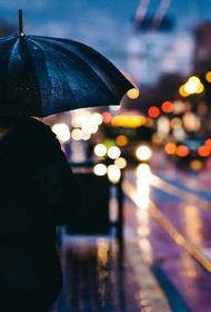 Москвичей предупредили о грозовых дождях на этой неделе