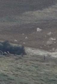 Пашинян заявил, что в ходе боевых действий в Нагорном Карабахе погибли порядка 4 тысяч армян