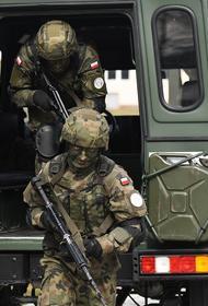 WarGonzo: появившиеся в Донбассе польские военные направились к линии обороны на стыке ДНР и ЛНР