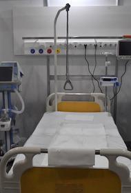 В России за сутки скончались 399 пациентов с коронавирусом