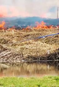 Видео: Никакой катаклизм не может напугать рыболова