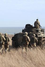 Киевский политолог Бортник назвал условия для военного разгрома Украиной ДНР и ЛНР