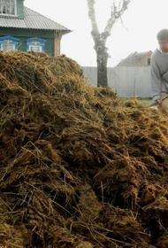 Росприроднадзор  задушит фермеров навозом?