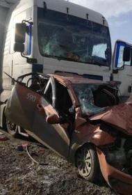 В Челябинской области «Яндекс.Такси» с пассажиром попало в смертельное ДТП