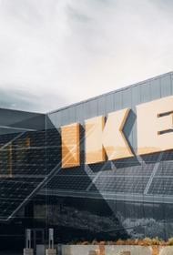 Обеспечить все магазины ИКЕА в России солнечной энергией стоит 21 млрд рублей