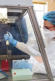 В Крыму за сутки выявили более 100 заболевших коронавирусом