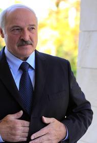 В Кремле оценили информацию о покушении на Лукашенко