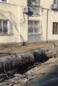 В Хабаровске ветер сорвал крышу с многоквартирного дома