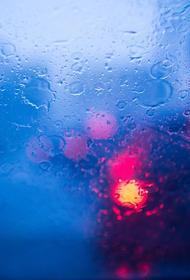 Автоэксперт Мельников напомнил правила безопасного вождения, когда идет дождь