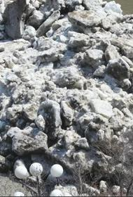 Видео: Хабаровск, ледоход на реке Амуре