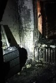 Робот-пылесос чуть не погубил семью в Челябинской области