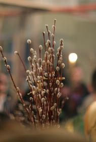 Как православные верующие отмечают Вербное воскресенье