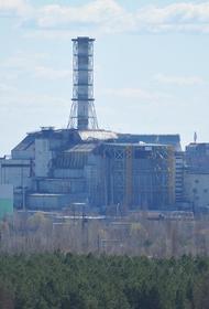 В чернобыльской зоне организуют музей и места отдыха