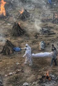 Коронавирусная эпидемия в Индии усиливается