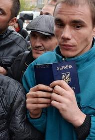 МВД потребовало, чтобы нелегальные мигранты покинули Россию до 15 июня