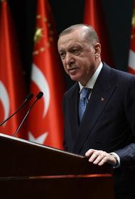 Сайт Avia.pro: ВКС России поставили Эрдогана на место, уничтожив сотни протурецких джихадистов на севере Сирии