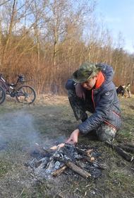 С 1 мая в Подмосковье запрещено посещение леса и приготовление шашлыков на природе